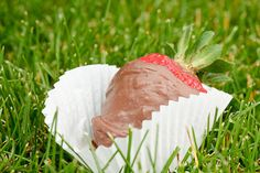 Chocolate Covered Strawberries (Or Cinnamon Bears, Apples, Pineapple, Gummi Bears...) Recipe