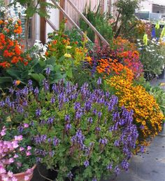 Create a blaze of color with tightly placed pots.