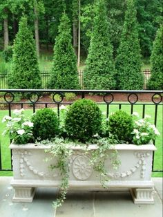 Great looking planter