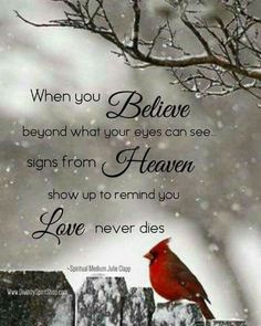 When you believe beyond what your eyes can see signs from heaven show up to remind you love never dies. Great Quotes, Me Quotes, Inspirational Quotes, Motivational, Bird Quotes, Loss Of A Loved One Quotes, Loss Quotes, Signs From Heaven, Miss You Mom