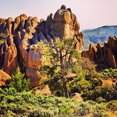 Hartman Rocks, Gunnison, Colorado