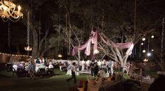 rustic elegant wedding in backyard