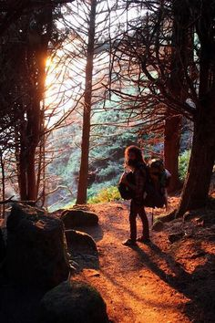 Explore the woods. #MeetTheMoment