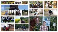 Inzwischen haben wir ganz unterschiedliche Trainer auf PferdeTermine.de: Von Arien Aguilar bis zu Sandra Schneider (nur so als Beispiel ;-)). Da kommen nicht nur mir immer wieder Fragen auf, wen wir auf PferdeTermine.de als Veranstalter aufnehmen. Lest meine aktuelle Einschätzung dazu im Blog und warum ich auch hier eure Mithilfe benötige.