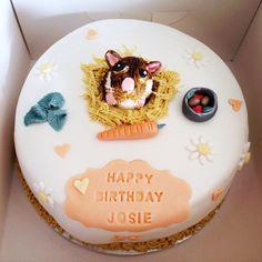 My hamster birthday cake!