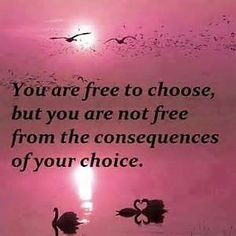 Rogers: you are free to choose, but you are not free from the....