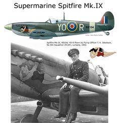 Supermarine Spitfire MK.IX                                                                                                                                                                                 More