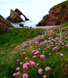 bow fiddle rock moray coast scotland | Flickr - Photo Sharing!