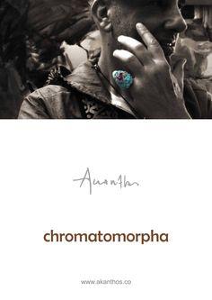 www.akanthos.co