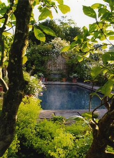 Beautiful plantings surround this pool at Hanman Court, Bristol, UK. I& J Bannerman Postcard Images