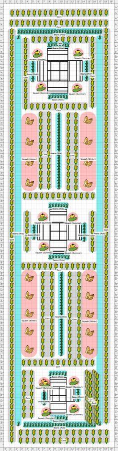 Garden Plan - Three Sisters