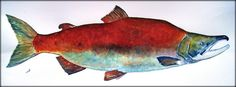 Sockeye Red Salmon original watercolor painting by Juan Bosco - San Martin Arts Crafts