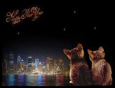 funpot: Feuerwerk 2015.gif von Floh