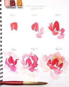 Flower Drawing ️ Sharing a little step by step with you today! Here's how to paint a red peony the way I would. Hope this helps if you try this Watercolor Water, Easy Watercolor, Watercolor Cards, Floral Watercolor, Watercolor Paintings, Watercolor Flowers Tutorial, Step By Step Watercolor, Watercolour Tutorials, Watercolor Techniques