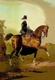 Originally published separately, these prints were combined into a book in 1873 and a section on veterinary medicine was added. A ladies horse, property of the late earl of Pembroke from the original