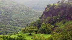 Estas montañas contienen más de 5000 especies de plantas | Foto galeria 1 de 8 | El Comercio Peru