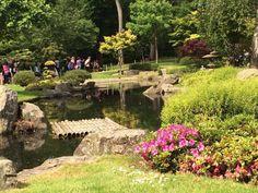 Kyoto Garden (Londra): tutto quello che c'è da sapere - TripAdvisor