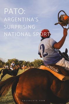 Learn about Argentina's national sport Pato, the dark history of the national sport of Argentina, how to see Pato in Buenos Aires, popular sports in Argentina, Argentina sports, polo in Argentina #buenosaires #argentina
