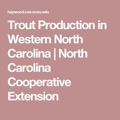 Trout Production in Western North Carolina | North Carolina Cooperative Extension