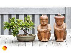 Azië houtsnijwerk toerisme China Japan rare old hand-carved wood bois bonsai decor early twentieth century Belgian Beauties vintage old door BelgianBeauties op Etsy