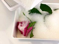 Conservare il Bouquet, avere la passione per le composizioni di fiori secchi o essere un fiorista professionista. In tutti questi casi il silica gel è un'ottimo strumento per essiccare i fiori.