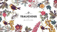 Tealicious on Behance