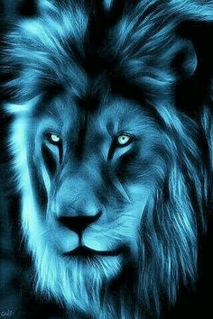 King of the pridw Big Cats Art, Cat Art, Beautiful Cats, Animals Beautiful, Lion Live Wallpaper, Tiger Artwork, Lion Tattoo Sleeves, Wolf Spirit Animal, Lion Pictures