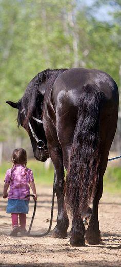 #Girl & #Horse https://www.pinterest.com/moycomp/pets-animals-puppy-dog-cat/
