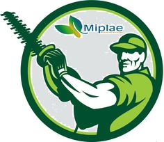 Miplae Ambiente Ecologia