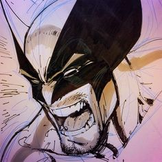 Wolverine by J. Scott Campbell