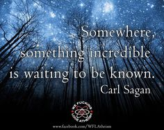 I have been going through Carl Sagan quotes for like 20 minutes to find this one, I want a tattoo of it