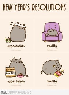 Expectations vs reality - Pusheen the cat :)