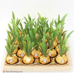 Ferrero Rocher Pineapples are so adorable and this DIY craft is so easy to make for a cute and fun party favor for a luau, beach, or pineapple party Luau Theme Party, Hawaiian Luau Party, Tiki Party, Cuban Party Theme, Fiesta Party Favors, Beach Party Favors, Hawaiian Theme, 21st Birthday Decorations, Diy Party Decorations