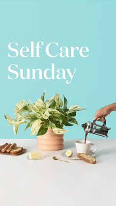 Happy #SelfCareSunday 😌We're spending our afternoon with Toronto-based artist Jackie @homebyfaithpins, who shares her mentality of thinking deeply on the week that's just passed and showing gratitude for all that's happened, restoring and recharging, and getting ready for the week ahead. Indoor Gardening Supplies, Showing Gratitude, Sunday Scaries, Plants Delivered, Indoor Planters, Self Care Routine, Cool Plants, Plant Care, House Plants