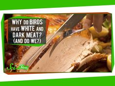 Science: Why Do Birds Have White And Dark Meat? (And Do We?) #food #birds #muscles #meat