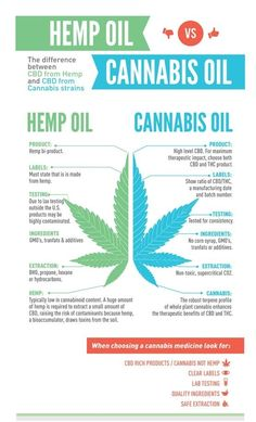 Hemp and Marijuana are of the same genus. Cannabis is made up of five to ten percent THC. Therefore, people consuming it are likely to exhibit 'stoned' effects. On the other hand, hemp oil contains less than two percent THC, but has a high concentration of the CBD. This makes it ideal for a well deserved relaxation after a long day. #LegalizeMarijuana #HempOil #CannabisOil #PotValet #Cannabis #LosAngeles #Medical #Marijuana #Delivery