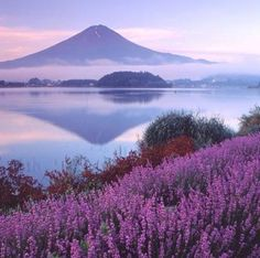 Mount Fugi, Japan