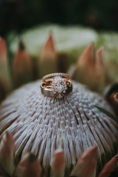 wedding rings oval Gorgeous oval-cut engagement ring by Heidi Gibson Boho Wedding Ring, Ruby Wedding Rings, Cool Wedding Rings, Custom Wedding Rings, Wedding Rings Solitaire, Wedding Rings Vintage, Rose Gold Engagement Ring, Bridal Rings, Wedding Jewelry