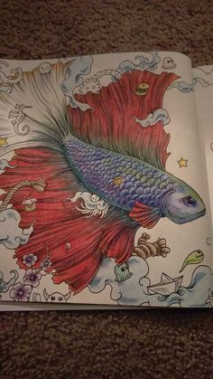 Amazon.com: Animorphia: An Extreme Coloring and Search Challenge Very fun  By Jesse Milharn on Dec 11, 2015  I really like this coloring book. I have found some have too much detail, and others too little.