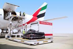 Emirates  Cầu nối giữa Việt Nam với thế giới