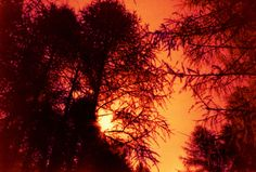 Sunset by Carlos Borroni Celestial, Sunset, Outdoor, Outdoors, Sunsets, Outdoor Games, Outdoor Living
