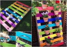 Make a Rainbow Pallet Vertical Garden