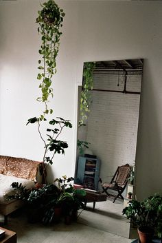 love the idea of opening up spaces with big mirrors and having lots of greens around