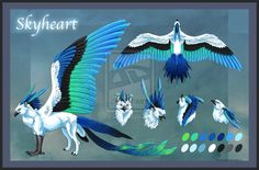 Skyheart Reference Sheet by *Araless on deviantART