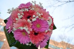 daisy and baby's breath bouquet - Google Search