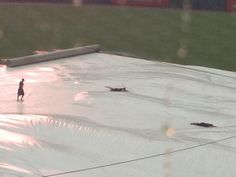Laird, Johnson, and Gattis are still kids at heart; using the tarp as a Slip N Slide!