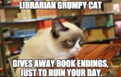 Grumpy cat quotes, grouchy quotes, grumpy cat jokes, grumpy cat humor, grumpy cat pictures …For more hilarious quotes and jokes funny visit www.
