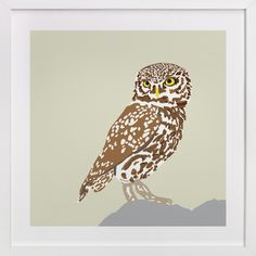 Owl by Faye Femister at minted.com