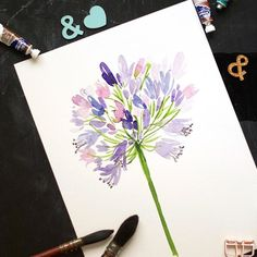 Day 7: Agapanthus  The thing I loved most about this lesson was how Yao explained about colors and brought about that interest by mixing both warm and cool purple tones. . . . #artistsofinstagram #illustratorsofinstagram #cbdrawaday #inkstruck #flowerillu