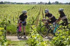 Ballades à vélos dans les vignobles de #bourgogne  www.gite-bourgogne.net